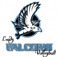 ladyfalconvolleyball
